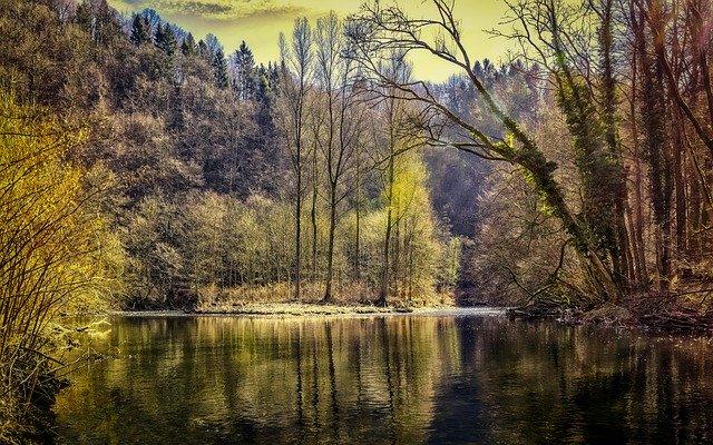 lesní jezero